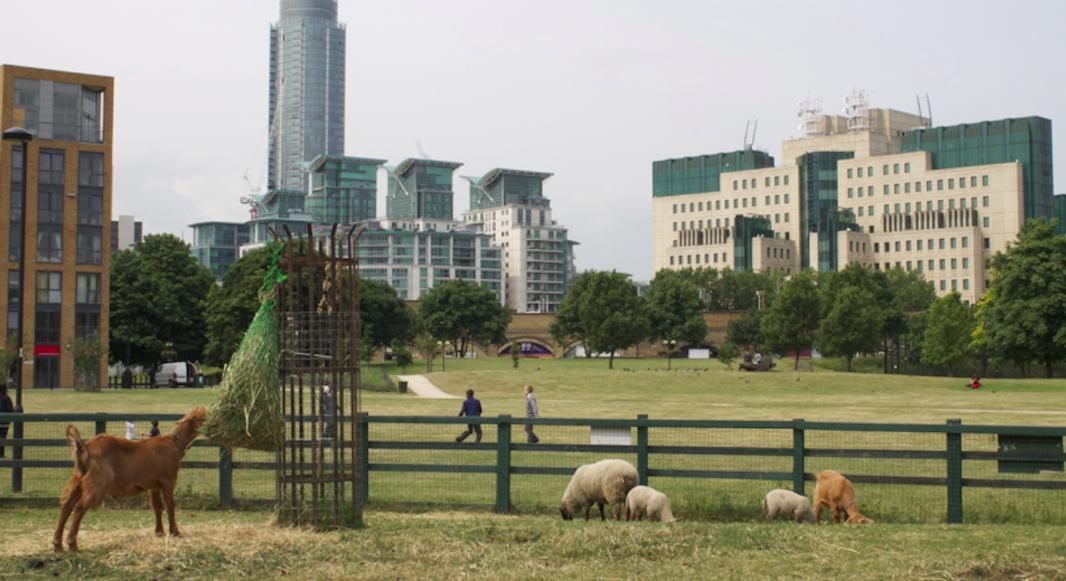 city farm Londres